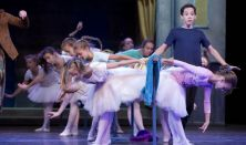 Billy Elliot - a Musical