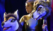 Harlekin Bábszínház: A dzsungel könyve - prózai színpadi előadás