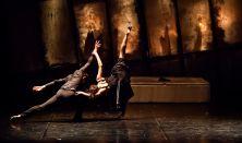 Verdi-Toplánszky-Fodor: TRAVIATA - opera-táncátirat két felvonásban
