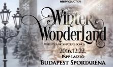 WINTER WONDERLAND with Frank Sinatra's songs