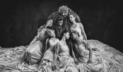 Drakula utolsó tánca