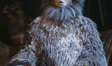 Andrew Lloyd Webber - Macskák / Cats