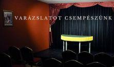 2017 Szilveszteri Bűvész Show