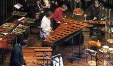 ...együtt fújhatjuk a dallamot... <br>Az Amadinda együttes és Presser Gábor szilveszteri hangversenye
