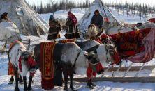 Transzszibériai Expressz: A fehér rénszarvas
