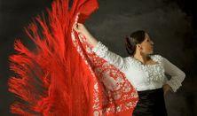 La Kati  Cuardo Flamenco: elődás, koncert és táncház