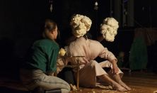 FACT - THE WOODS Prágai Előadóművészeti Egyetem, Színművészeti Kar