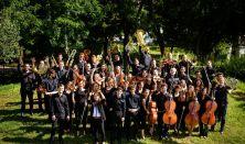 Jótékonysági koncert, Medikus Zenekar, Km. Schöck Atala, Brahms, Mahler, Dvorák: 9. szimfónia