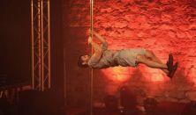 Pole Theatre Hungary művészi rúdtáncverseny – esti (profi) program