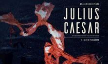 Julius Caesar - Kolozsvári Állami Magyar Színház