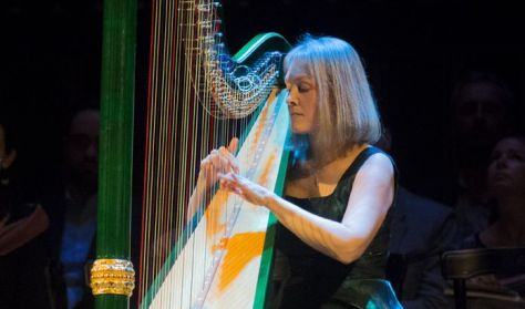Vigh Andrea hárfabemutató koncertsorozata felnőtteknek  A hárfa története 4.