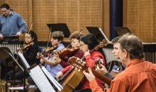 ZAJONGÓ II. Farsangolás a hangok birodalmában (koncert gyerekeknek 8-14 éves korig)