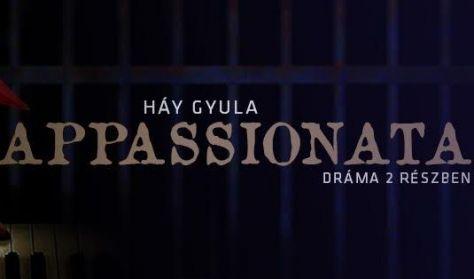 Háy Gyula : Appassionata / (dráma 2 részben)