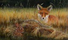A nyúl és a róka