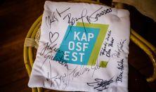 Kaposfest 2017/08/16 délelőtt