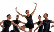 Dance Theatre of Harlem - Színpompás Harlem