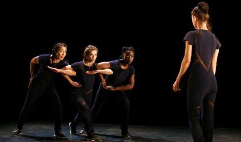 Compagnie par Terre / Anne Nguyen (FR): Önellátás (Autarcie (...) ) 200% tánc