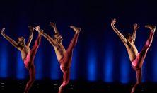 Dance Theatre of Harlem - Ritmusperspektívák