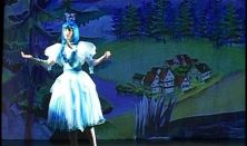 Gyermekszínház - A hattyúk tava