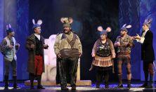 Diótörő és Egérkirály - Családi Musical