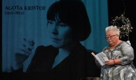 Falusi Mariann:Az Analfabéta