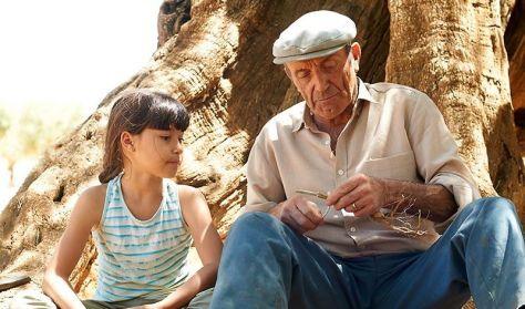 SPANYOL FILMHÉT 2017: Az olajfa