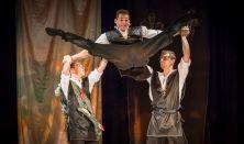Coincidance Táncszínház: Széttáncolt cipellők