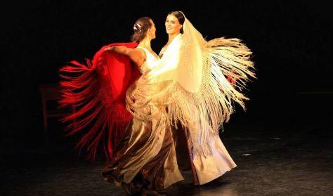 Táncfarsang 2018 - Farsangi Flamenco Fiesta - Las Flamencas Anya és Lánya előadása