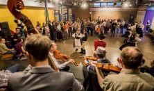 BFF2019 - Fesztiválnyitó gála - Bazseva, Dalinda szerdai táncház