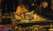 Kincseskamrák - A csodák világa - VÁRkert Mozi
