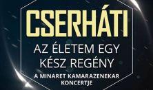 CSERHÁTI-Az életem egy kész regény