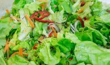 Nyers vegán ételkészítő tanfolyam