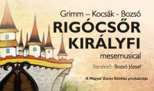 Rigócsőr királyfi - Mesemusical