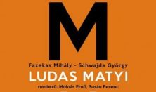 Lúdas Matyi