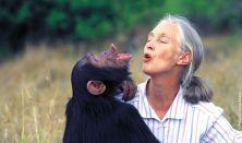 Egy este Jane Goodall társaságában