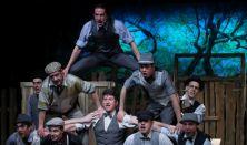 A Pál utcai fiúk - musical
