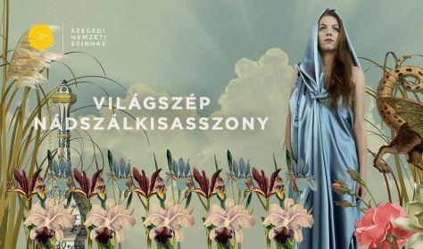 Litvai Nelli: Világszép Nádszálkisasszony