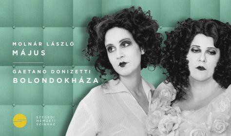 Molnár László - G. Donizetti - E. Giraldoni: Május /Bolondokháza