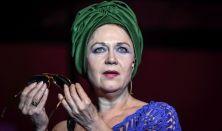 Vajda Katalin: Anconai szerelmesek