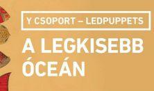 Y Csoport - Ledpuppets: A legkisebb óceán