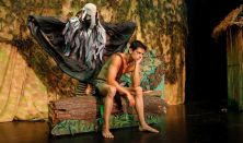 Maugli, a dzsungel fia