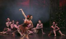 Bizet: Carmen - táncjáték