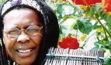 Hailu Mergia (ET), Stella Chiweshe (ZW)