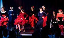 Noche flamenca - kurzuszáró koncert