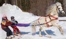 Skijoring – lovassíelés, új dimenzió a téli sportokban