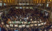 TŰZ, VÍZ, FÖLD, LEVEGŐ - A Kodály Filharmonikusok koncertje a Budapesti TavasziFesztiválon /BTF 2019