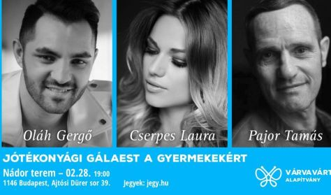 VÁRVA VÁRT Alapítvány koncert