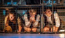 Tom Sawyer kalandjai - az Újvidéki Színház vendégjátéka