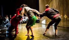 iCoDaCo International Contemporary Dance Collective - it will come later