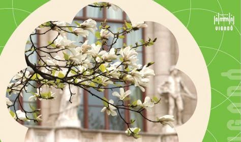 Tavaszi Tematikus Séták (BUM)